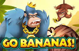 Go Bananas Slot Machine Reviewed for Internet Casino Gamers